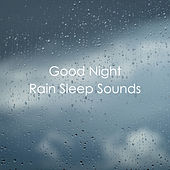Good Night Rain Sleep Sounds by Various Artists