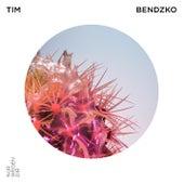 Nur wegen dir von Tim Bendzko