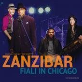 Fiali in Chicago von Zanzibar