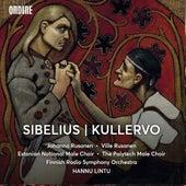 Sibelius: Kullervo, Op. 7 de Various Artists
