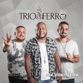 Pra Vida Inteira von Trio de Ferro