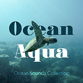 Ocean Aqua by Ocean Sounds Collection (1)