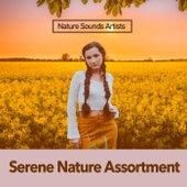 Serene Nature Assortment de Nature Sounds Artists