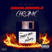 Downloadable Chronic de J-Money