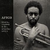 beats, rhymes & mr. scardanelli (Acoustic) de Afrob