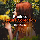 Endless Nature Collection by Nature Sounds (1)
