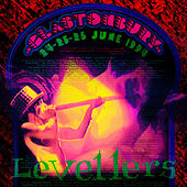 Glastonbury '94 by The Levellers