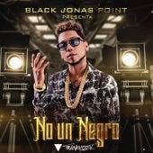 No¹ Un Negro von Various