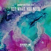 Got What You Need (Remixes) by Chumpion