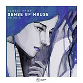 Sense of House, Vol. 46 by Various Artists