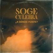 ¿A dónde fuiste? de Soge Culebra