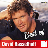BILD Best of de David Hasselhoff