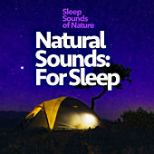 Natural Sounds: For Sleep by Various Artists