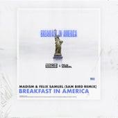 Breakfast In America (Sam Bird Remix) de Madism