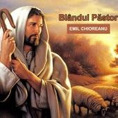 Blândul Păstor by Emil Chioreanu