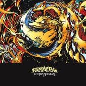 12 Step Program von Panacea (Hip-Hop)