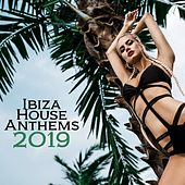 Ibiza House Anthems 2019 by Various Artists