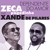 Dependente Do Amor by Zeca Pagodinho