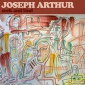Seek and Find de Joseph Arthur