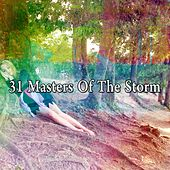 31 Masters of the Storm by Rain Sounds and White Noise