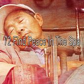 72 Find Peace in the Spa de Ocean Sounds Collection (1)