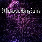 59 Therapeutic Healing Sounds de Meditación Música Ambiente