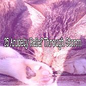 25 Anxiety Relief Through Storm by Rain Sounds and White Noise