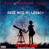 Gaze into My Legacy (feat. Last Jounin) by Pig