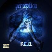 Perception by F.E.B.