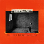 Trapped in the American Dream by Terri Lyne Carrington