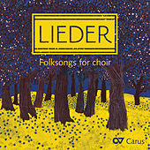 Lieder: Folksongs for Choir by Various Artists
