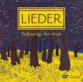 Lieder: Folksongs for Choir de Various Artists