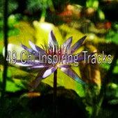 49 Chi Inspiring Tracks by Zen Music Garden