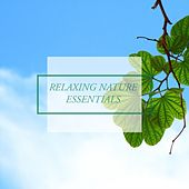 Relaxing Nature Essentials by Nature Sounds (1)