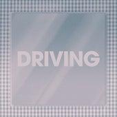 Driving by Poliça