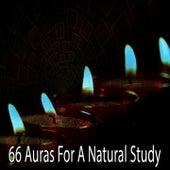 66 Auras for a Natural Study von Massage Therapy Music