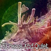 53 Peace and Quiet by Spa Relaxation