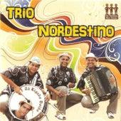 Tá Ligado Doido von Trio Nordestino