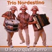 O Povo Quer Forró von Trio Nordestino