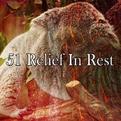 51 Relief in Rest de Nature Sounds Nature Music (1)