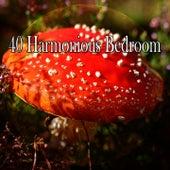 40 Harmonious Bedroom de Sleepicious