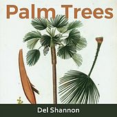 Palm Trees by Del Shannon