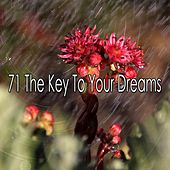 71 The Key to Your Dreams by Ocean Sounds Collection (1)
