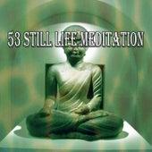 53 Still Life Meditation von Massage Therapy Music