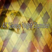 47 Sleepy Night Slumber de White Noise Babies