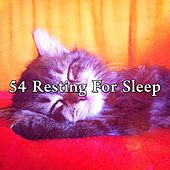 54 Resting for Sleep by S.P.A