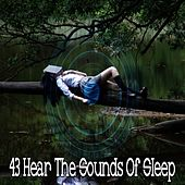 43 Hear the Sounds Of Sleep by Lullaby Land