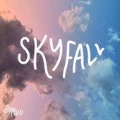Skyfall de Bravo