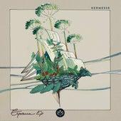 Esperanza by Kermesse