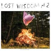 Lost Wisdom, Pt. 2 von Mount Eerie